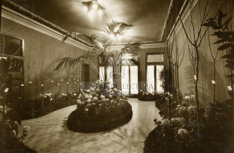 Quart Concurs exposició de crisantems al Centre de Lectura de Reus