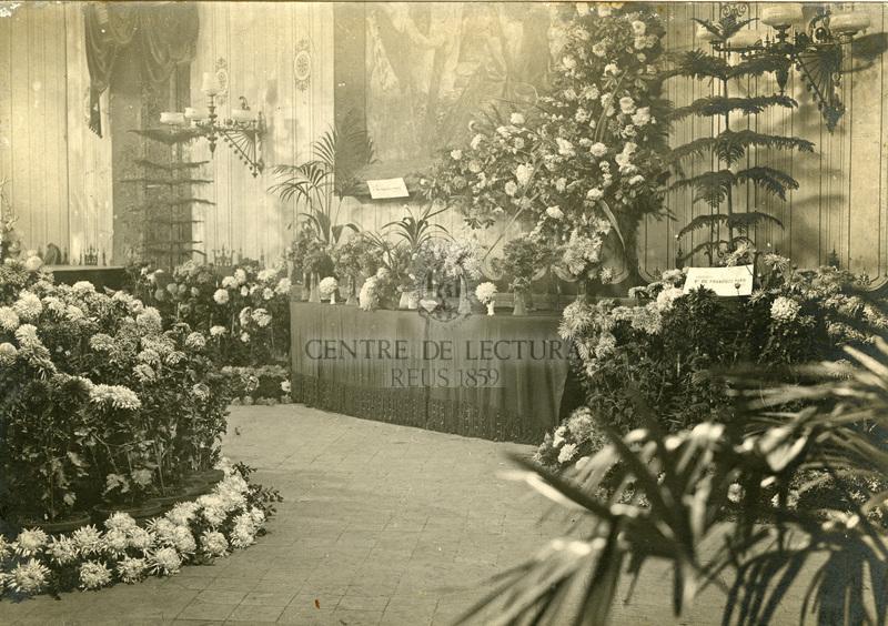 Primera Exposició de crisantems al Centre de Lectura de Reus