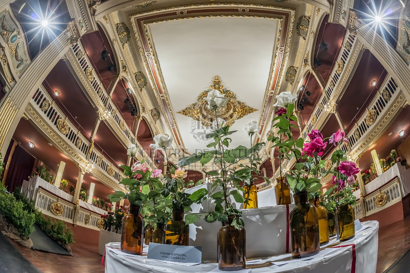 LXVIIè Concurs Exposició Nacional de Roses