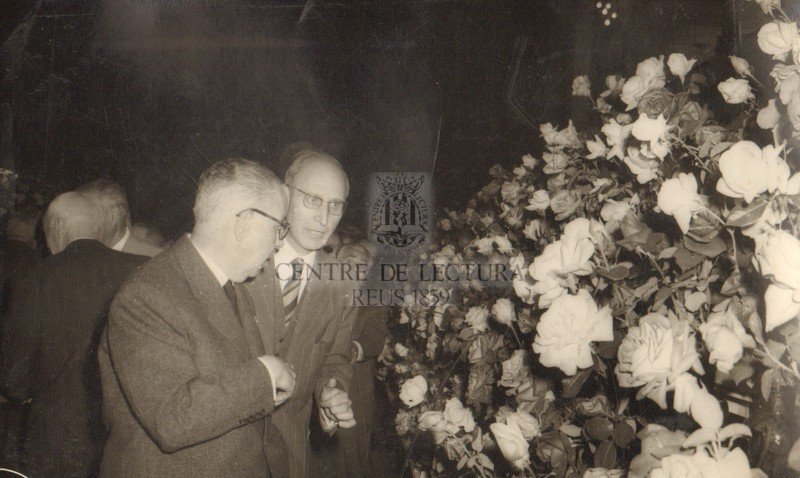 13è Concurs Exposició Nacional de Roses